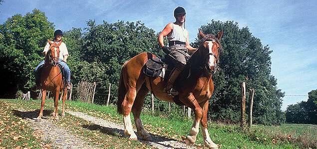 centre equestre 87